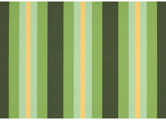 Brise vue capri vert dickson orchestra 8615