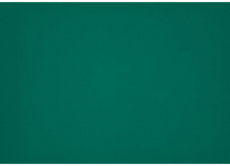 Brise vue vert dickson orchestra 0003