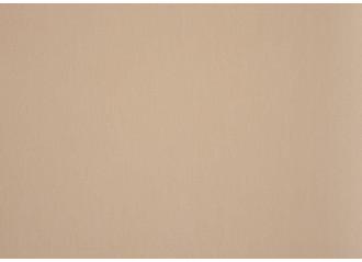 Brise vue dune beige dickson orchestra 0681