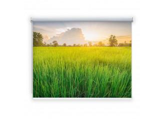 Store enrouleur occultant sur mesure paysage fond herbe