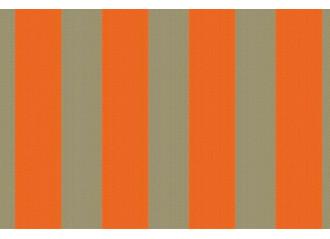 Brise vue Giovanardi Gris Orange BYE 8472