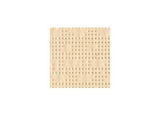 Brise vue rétractable ultra résistant avec toile Soltis 96 8861 vanille